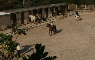 Week-end avec balade à cheval près du Cap Fréhel