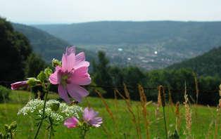 Offre spéciale: Week-end detente au Val d'Ajol (3 nuits au prix de 2)