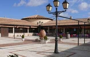 Especial Enoturismo: Escapada con visita a Bodega cerca de Fuente de Álamo (desde 2 noches)