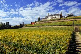 Château d'Isenbourg  -
