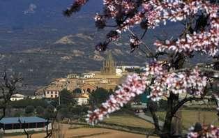 Escapada con visita guiada al Castillo de Loarre cerca de Huesca