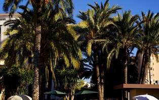 Escapada con cena, pádel y Sauna en Alicante (desde 2 noches)