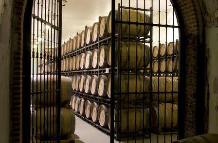 Offre spéciale : excellence des vignes du Duero