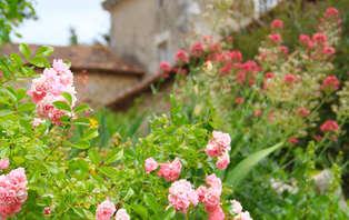 Week-end dans un château près de Poitiers
