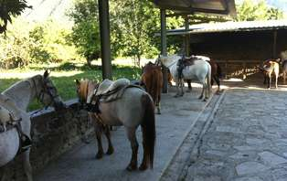 Escapada con paseo a caballo en el Valle de Benasque (desde 2 noches)