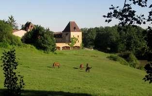 Week-end avec dîner et promenade à cheval, sur la route des vins de Bergerac