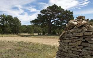 Escapada Aventura con degustación de embutidos de la tierra en la Sierra de Gúdar
