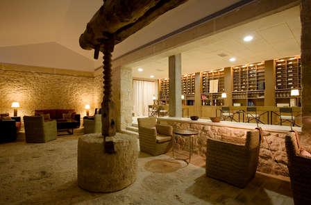 Especial Ruta de los Vinos: Enología y Relax en la Ribera del Duero (desde 2 noches)