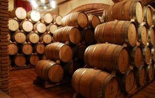 Escapada enológica con visita a bodega y botella de vino en Logroño