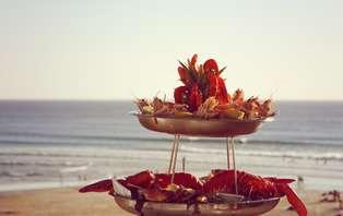 Offre Spéciale: Week-end avec dégustation de fruits de mer, face à l'océan à Biscarrosse