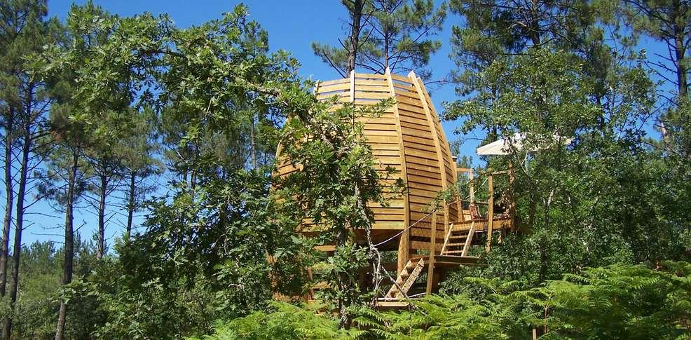 Week end en cabane perch e captieux - Office de tourisme du marsan ...