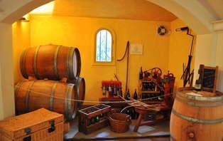 Week-end Oenologique avec visite ét dégustation de vin dans le Gard