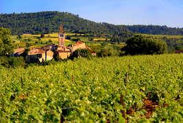 H tel les jardins de saint beno t h tel de charme saint - Les jardins de saint benoit carcassonne ...