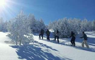 Escapada con raquetas de nieve en Sort