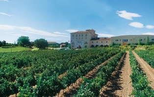 Escapada entre viñedos con visita a bodega en Aranda del Duero (desde 2 noches)
