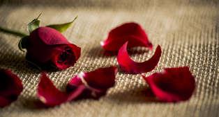 Valentijnsarrangement: wellnessweekend met diner vlakbij Durbuy (vanaf 2 nachten)