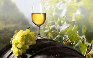 Escapada Gastronómica y Enológica: Cena degustación de tapas y cata de vinos cerca de Tudela