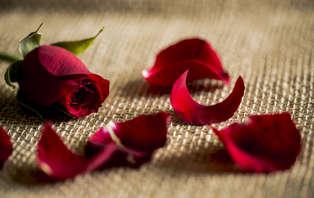 Escapada romántica: Enamorados con Cena en Castellon