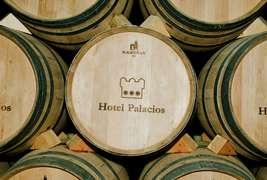 Hotel Palacios -