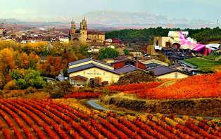 Escapada con visita de bodega en Rioja Alavesa