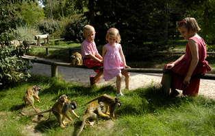 Week-end en famille avec entrée au parc zoologique