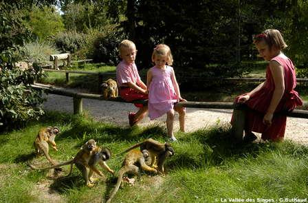 """Week-end en famille avec entrée au parc zoologique """" La Vallée des Singes """""""