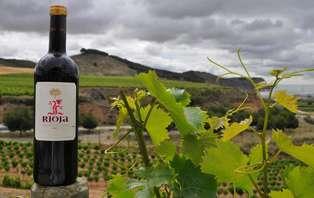 Escapada con cena y visita a bodega en La Rioja