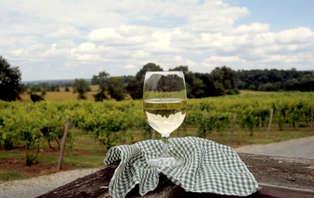 Séjour proche des vignes avec visite et dégustation de vins au Château de Marsannay près de Dijon