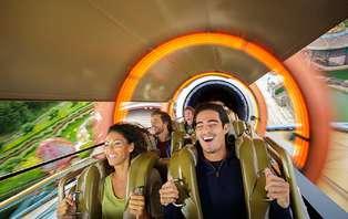 Week-end avec entrée aux 2 parcs Disney® jusqu'à 6 personnes