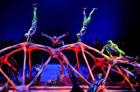 Verano Perfecto: Pensión completa,Palacio de Hielo y Cirque du soleil o Naturlandia (desde 3 noches)