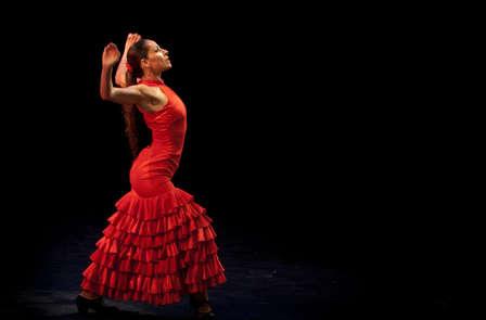 Weekend in Barcelona met toegang tot Palacio Flamenco