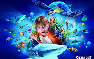 Week-end en famille avec entrée à l'Aquarium Sea Life jusqu'à 4 personnes