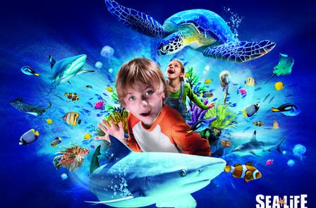 Offre spéciale: Week-end en famille avec entrée à l'Aquarium Sea Life jusqu'à 4 personnes