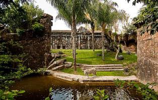 Escapada con Cena y entradas al Bioparc de Fuengirola