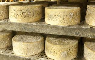 Week-end culturel avec visite d'une fromagerie et d'un centre de fabrication du lait (2 nuits)
