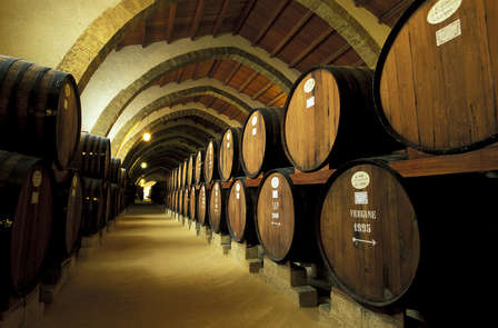 Week-end avec dégustation de vins au cœur d'Angers
