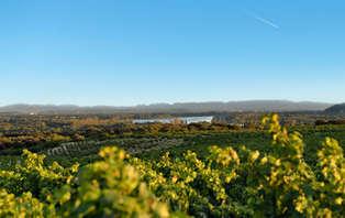 Week-end avec une dégustation de vins à côté d'Avignon