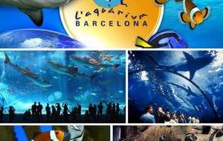 Escapada con entradas al Aquarium de Barcelona