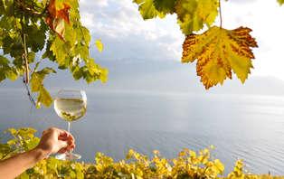 Week-end avec visite de cave et dégustation de vins à Saumur