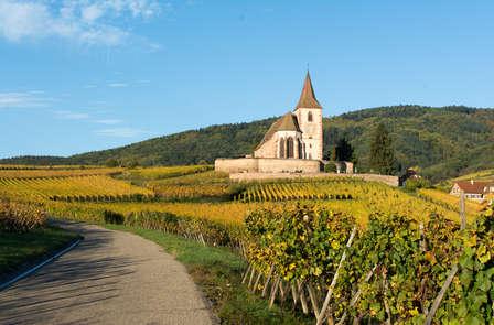 Week-end détente et dégustation aux pieds des Vosges