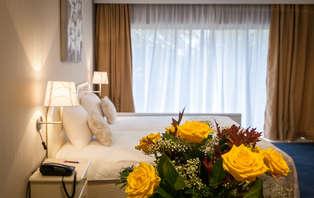 Week-end romantique avec petit dejeuner dans la chambre à Bruxelles