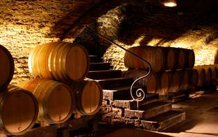 Escapade avec visite de cave et dégustation de vins près de Beaune