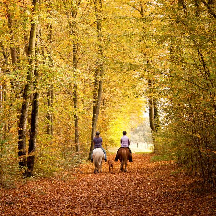 Jacuzzi De Jardin Belgique - Week-end en famille avec balade ? cheval et fondue dans les Ardennes