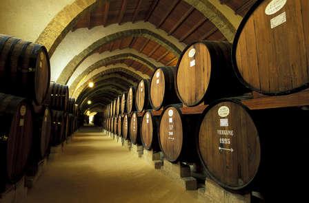 Week-end avec dégustation de vins au cœur des châteaux de la Loire