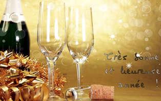 Offre spéciale Nouvel An : Week-end festif au Champ des Oiseaux