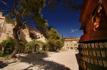 Escapade dans un grand domaine viticole du Languedoc entre terre et vignes