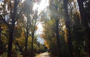 Escapada con cena y encanto en Sierra de Cazorla