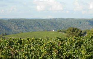 Séjour dégustation de vins au château Eugénie dans la région viticole de Cahors (2 nuits min)