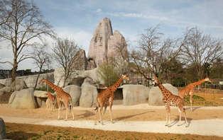 Week-end détente avec entrée au Parc Zoologique de Paris