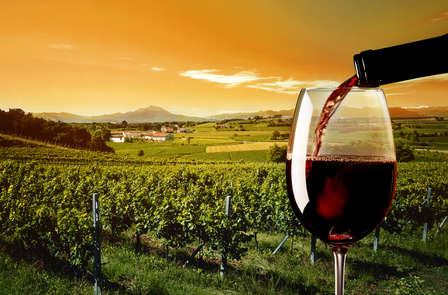 Escapada en plena Naturaleza  con visita a bodega y cata de vinos en las montañas de Prades